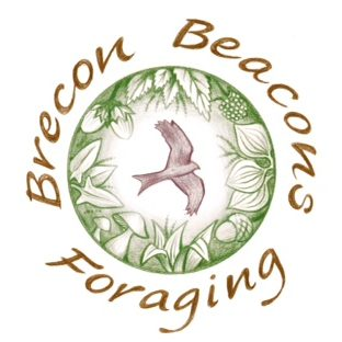 Brecon Beacons Foraging